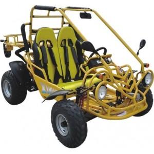 Go Kart / Motoren